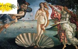 La nascita di Venere di Botticelli agli Uffizi con il simbolo della mimosa