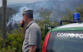 Un principio di incendio boschivo dove sta intervenendo la Forestale