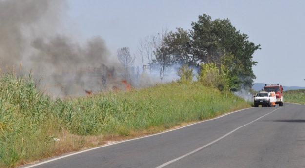 Record negativo di 59 incendi a Grosseto nel luglio 2016