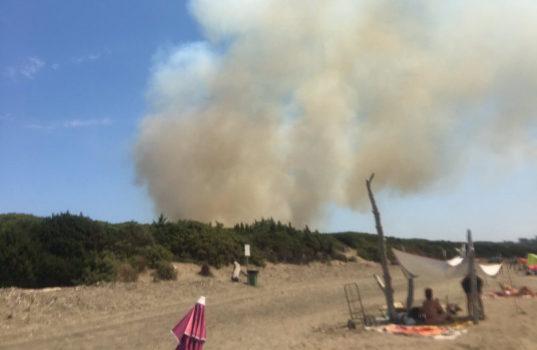 Incendio alla Parrina (Orbetello) - Foto da Twitter Paolo Bergamaschi