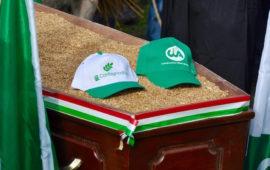 Il funerale del grano a Bettolle