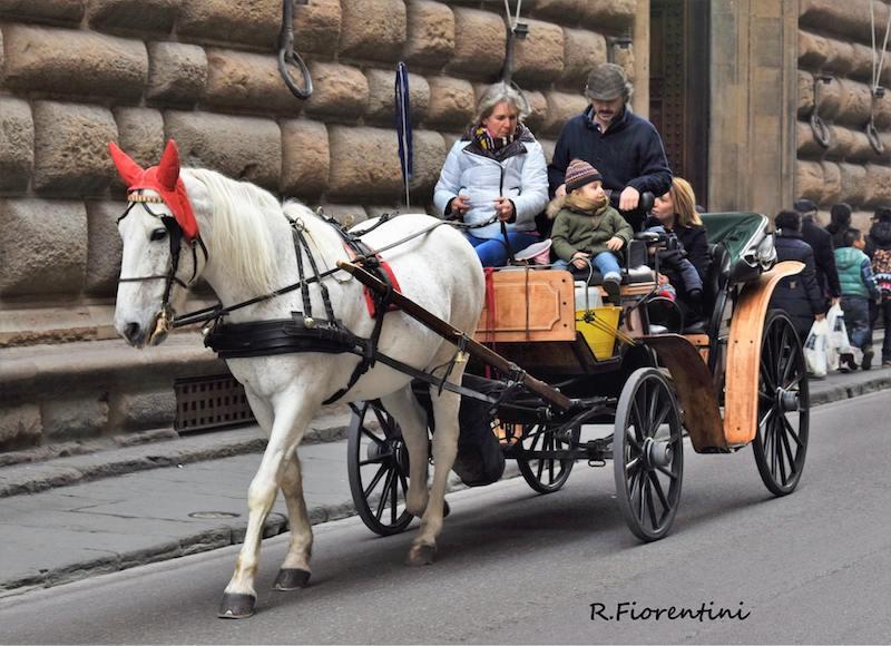 A passeggio per Firenze (Riccardo Fiorentini)