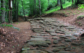 Un tracciato della strada romana Flaminia Militare tra Bologna e Fiesole