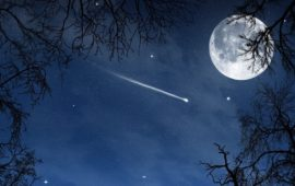 Appuntamento con le stelle cadenti nella notte tra il 12 e il 13 agosto