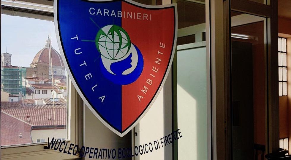 A Firenze la sede del Noe è in via dell'Agnolo 80 (palazzo Agenzia del Territorio)
