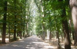 Tra i parchi di Firenze, le Cascine è il più frequentato